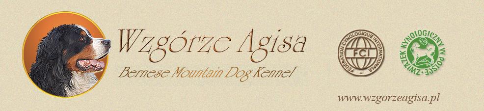 Wzg�rze Agisa